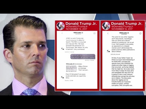 Donald Trump Jr. admits direct contact with WikiLeaks
