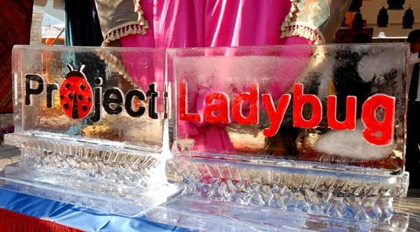 Project Ladybug