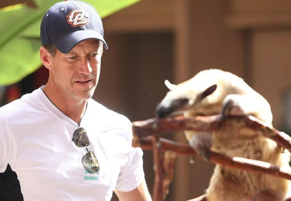 James Denton watches a lesser anteater on display at the San Diego Zoo on July 31, 2010 in San Diego, California. He and his family attended an Overnight Visit at the zoo.