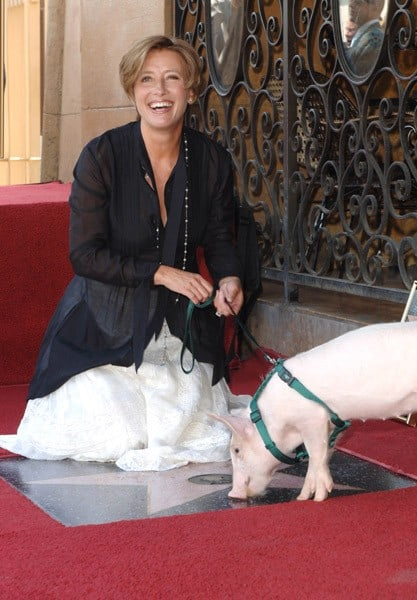 Emma Thompson Is honored with a star on the Hollywood Walk Of Fame on August 6, 2010 in Hollywood, California.