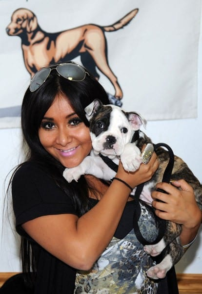 Nicole 'Snooki' Polizzi attends the Donations of Love Drive for the Associated Humane Societies at Popcorn Park on October 17, 2010 in Seaside Heights, New Jersey.