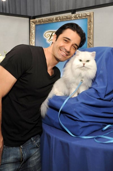 Actor Gilles Marini attends the Access Hollywood 'Stuff You Must...' Lounge produced by On 3 Productions at the Sofitel Hotel on January 15, 2011 in Los Angeles, California.