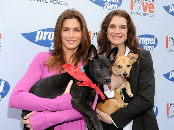 Cindy Crawford, Brooke Shields and Propel Zero raise money for Much Love Animal Rescue in Malibu to celebrate how our four-legged friends help to keep us active and healthy at Church Estates Vinyard on April 2, 2011 in Malibu, California.