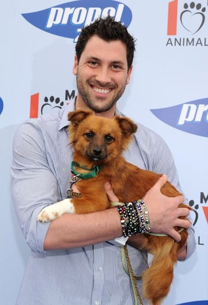Maksim Chmerkovskiy and Propel Zero raise money for Much Love Animal Rescue in Malibu to celebrate how our four-legged friends help to keep us active and healthy at Church Estates Vinyard on April 2, 2011 in Malibu, California.