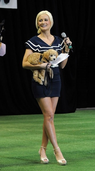 Holly Madison attends The Animal Foundation's 8th Annual 'Best in Show' at Orleans Arena on May 1, 2011 in Las Vegas, Nevada.