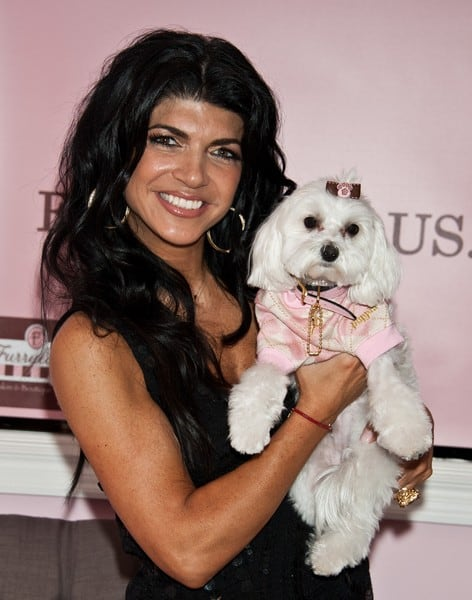 Teresa Giudice's 'Fabulicious!: Teresa's Italian Family Cookbook' Book Signing at Furrylicious Pet Salon & Boutique in Whitehouse Station, New Jersey on December 06, 2011