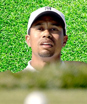 contact tiger woods