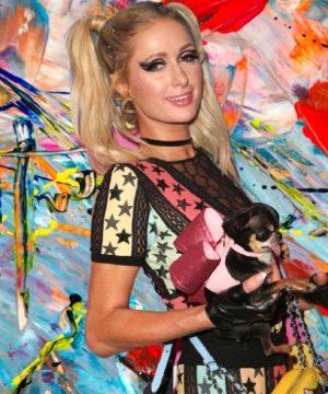 contact Paris Hilton